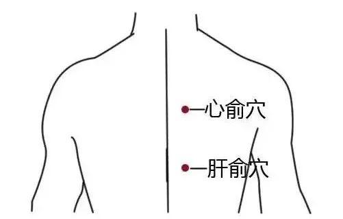 低血壓,試試按摩這6個穴位(血液循環緩慢)