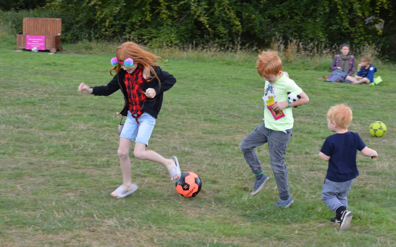 10 Reasons to Visit Seaton Delaval Hall  - ball games in the paddock