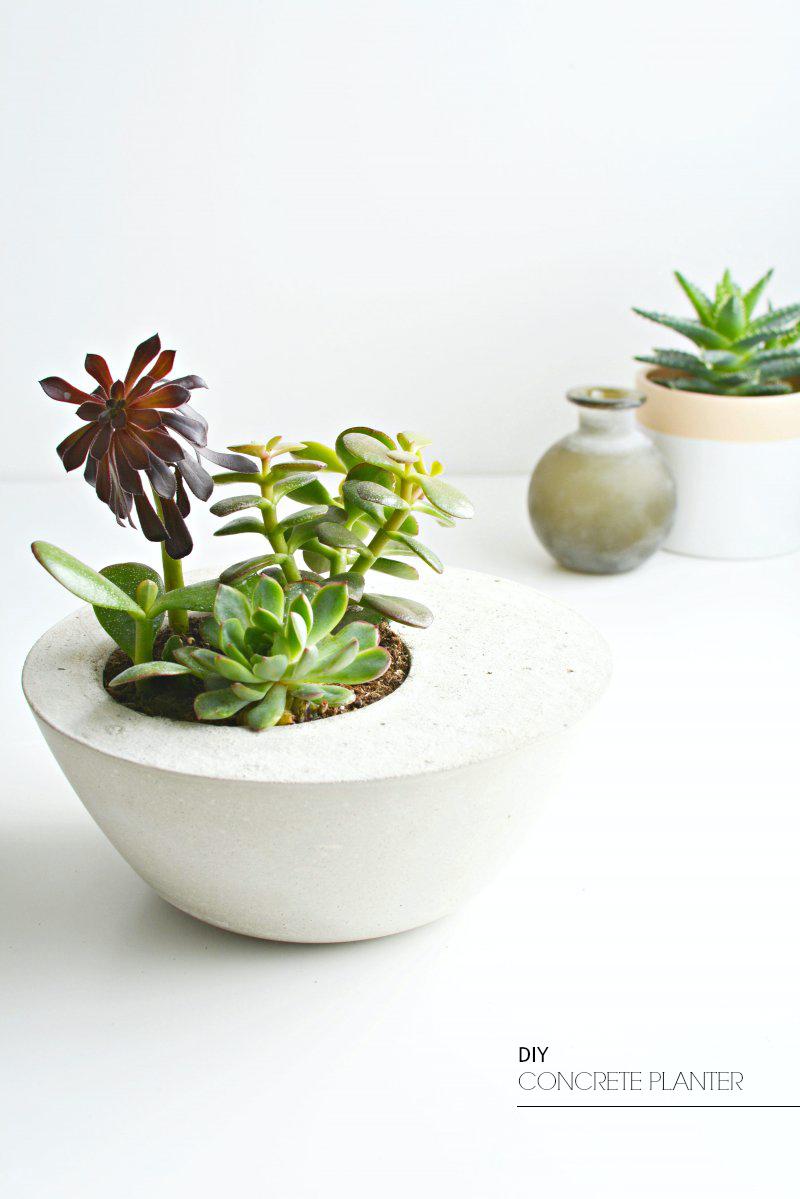 DIY concrete planter | BURKATRON