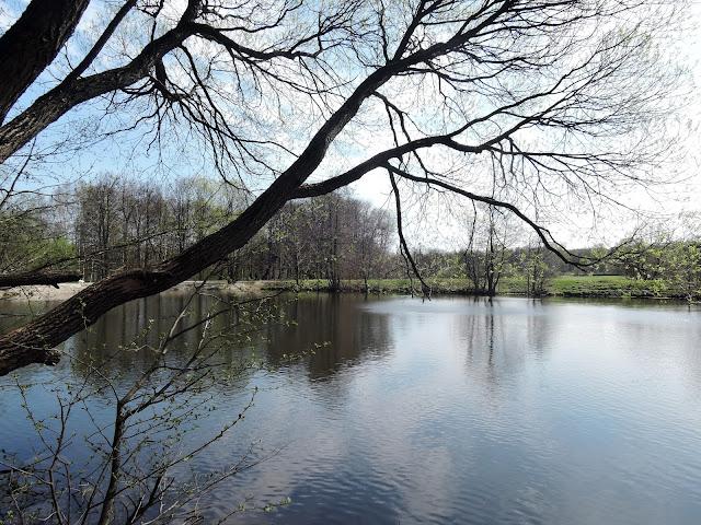 измайловский парк совхозный пруд