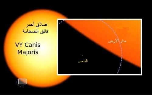 نجوم حمراء فائقة الضخامة Red Supergiant Stars
