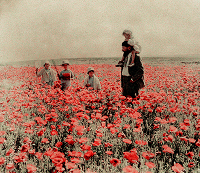http://uconstruction.tumblr.com/post/155522892054/gabriel-veyre-1871-1936-french-coquelicots-%C3%A0