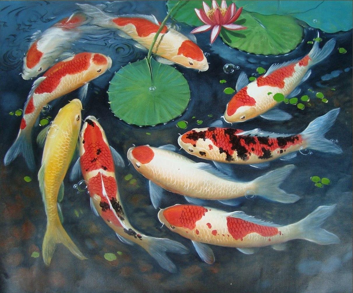 Kumpulan Lukisan Ikan Koi 3d Karnavalotto