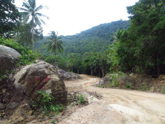 Строительство дороге на Пангане