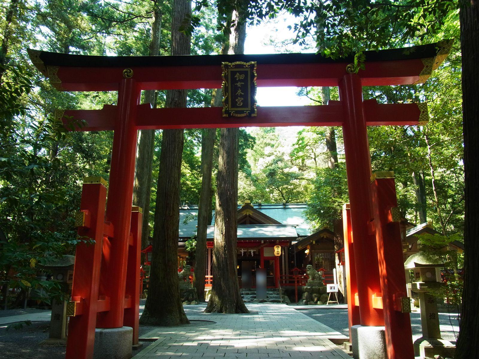 椿大神社と椿岸神社 | ゆき逢い...
