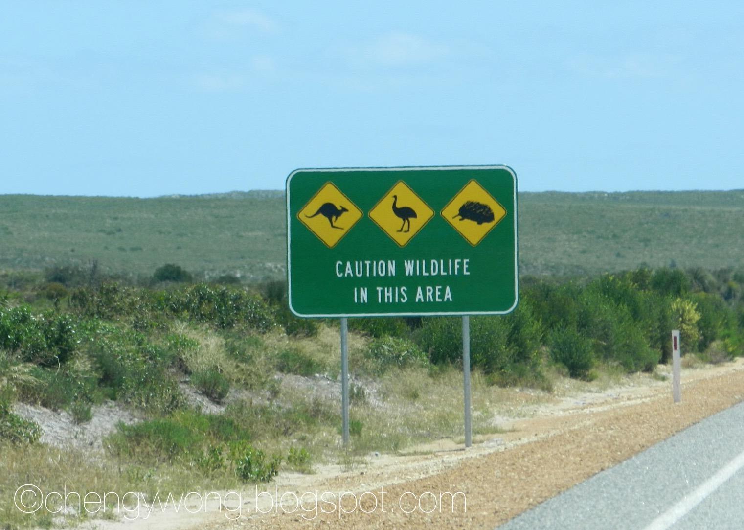 Small World: Self-Drive Through Western Australia for 13Days