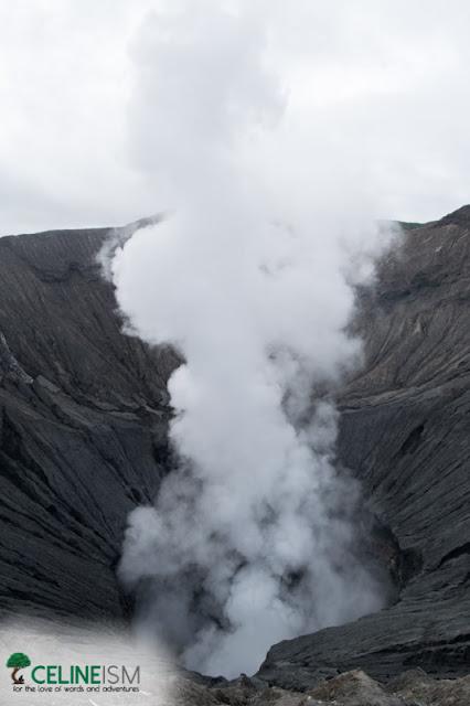 mt bromo volcano crater