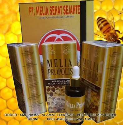 Propolis Melia 55 ml