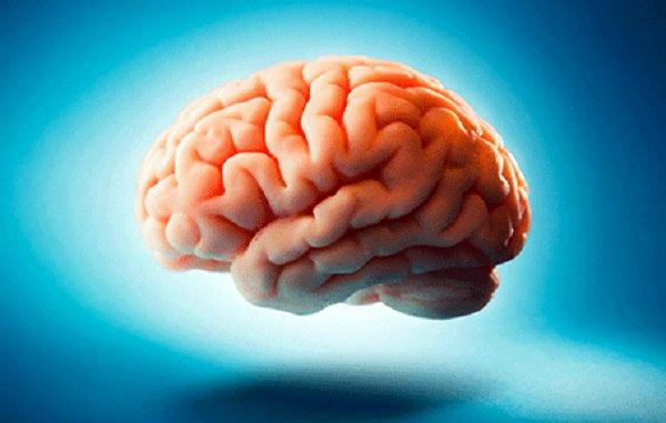 Agar Otak Berjalan Normal, Sholatlah Tepat Pada Waktunya