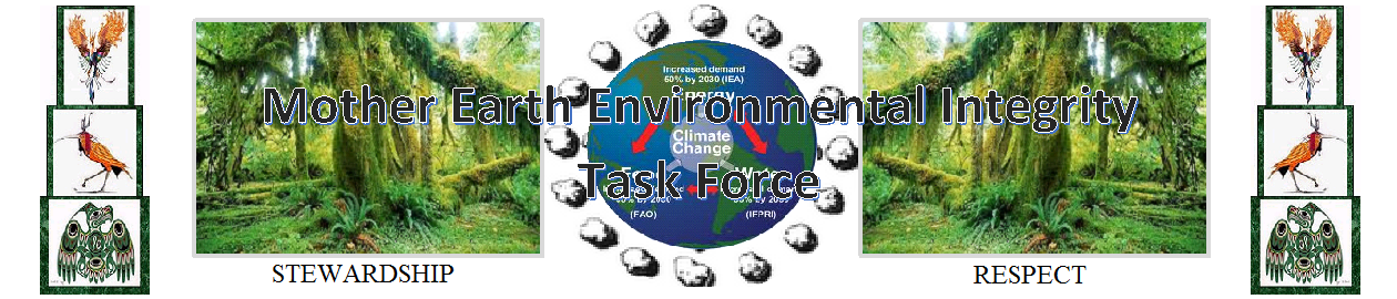 Mother Earth Environmental Integrity Task Force