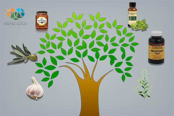 antibiotice naturale  pe care trebuie sa le aveti in casa