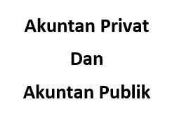 Akuntan Privat dan Akuntan Publik