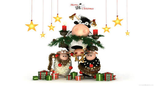 Fun Plannet: funny merry christmas wallpaper