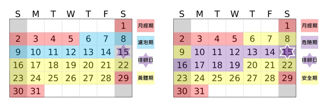 安全期計算圖表範例