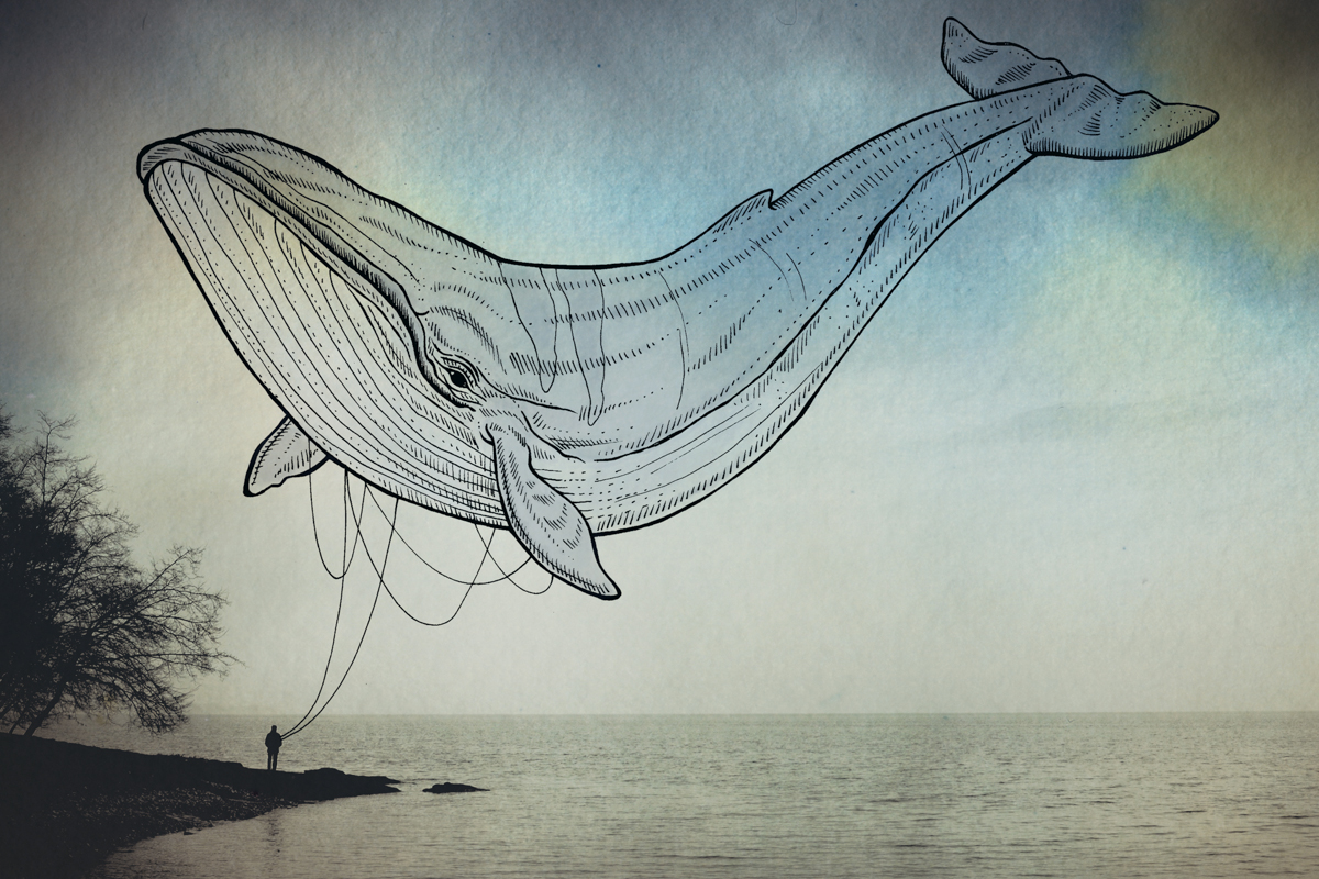 08-Whale-Giulia-Pex-Human-Body-and-the-Ocean-Drawings-on-Photos-www-designstack-co