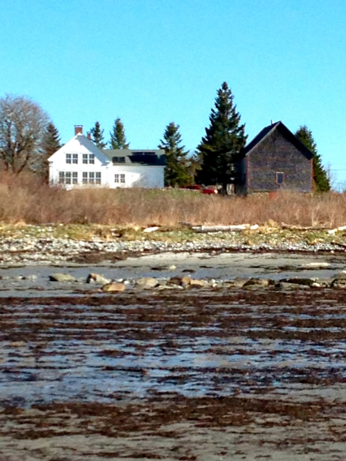 Molly Ruth Coastal Homes In Port Clyde Maine