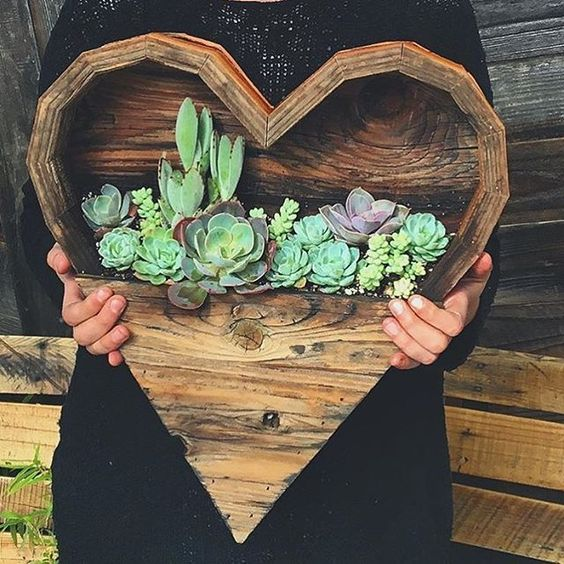43 Ways To Decorate With Succulents Amp Where To Score Good