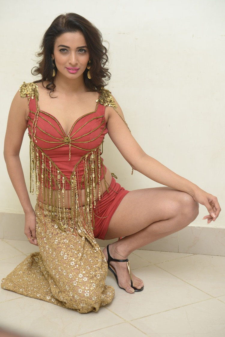 Heena Panchal New sizzling photo gallery-HQ-Photo-23