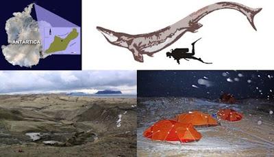 Fosil Monster Laut Raksasa Legenda Ditemukan di Antartika
