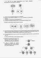 metabolismo de las proteínas consejos