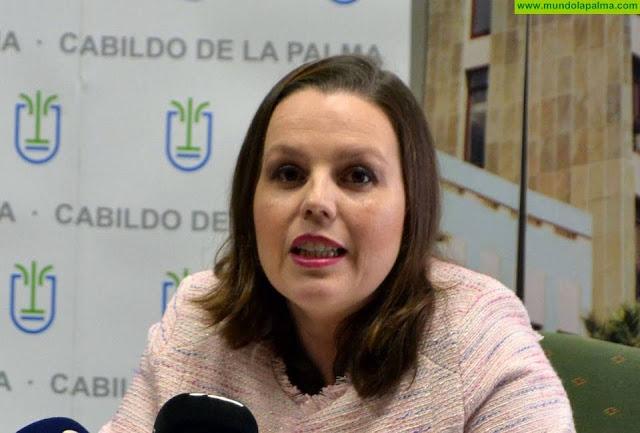 El Cabildo de La Palma mejora la inserción laboral y formativa de jóvenes con el proyecto La Palma SI II