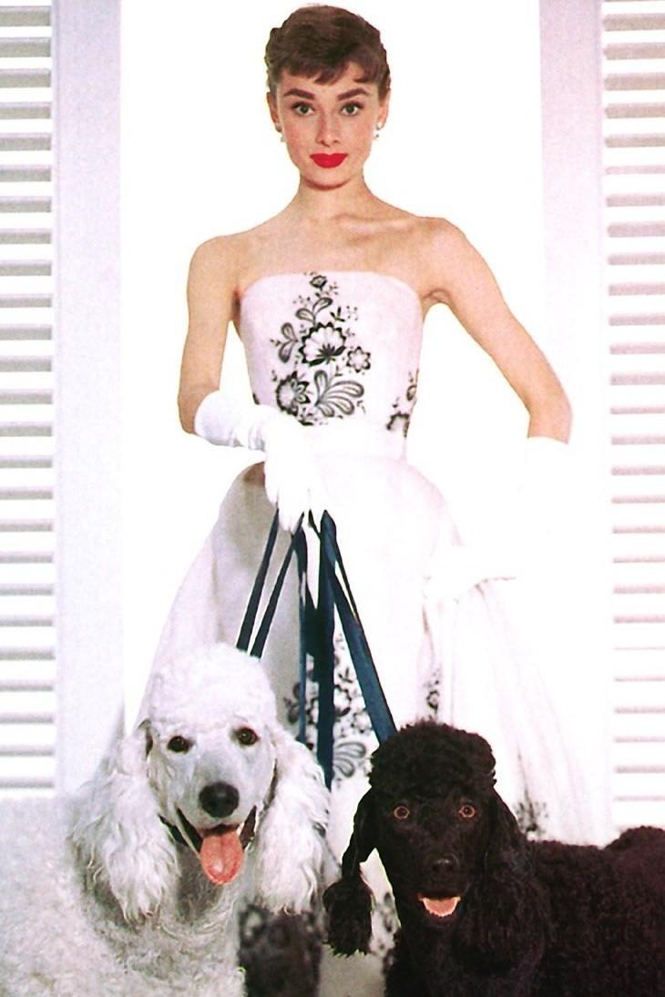 Rag Trade Sisters : Ode to Audrey Hepburn