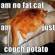 I'm pretty much a couch potato - Ore-Ida and me
