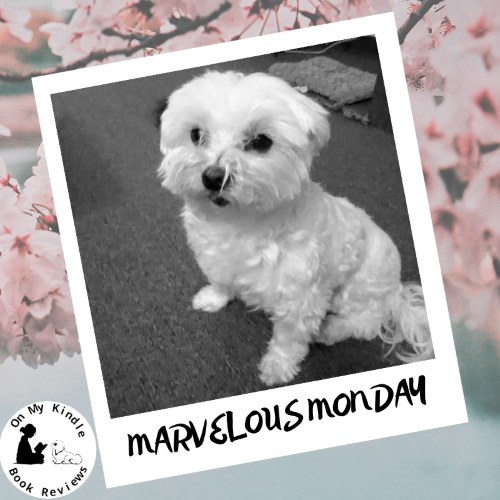 It's another marvelous Monday with Lexi!