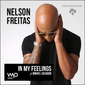 Nelson Freitas ft Mikkel Solnado - In My Feelings (Remix) (2o16) [DOWNLOAD]