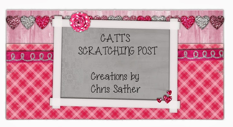 Catt's Scratching Post