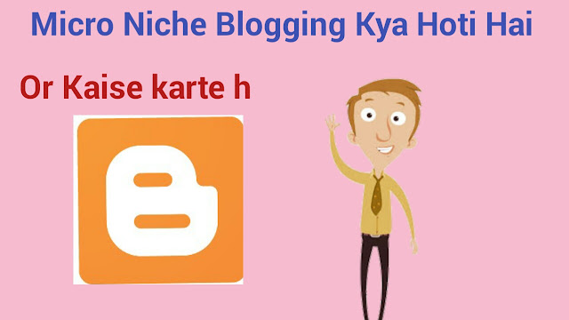 Micro Niche Blogging Kya Hoti Hai or Kaise Karte Hai