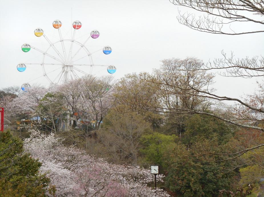 http://julafille.blogspot.com/2016/04/flowers-spring.html