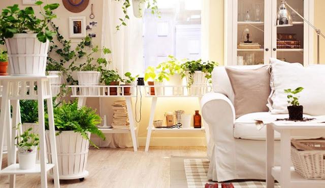 4 Maneiras Fáceis e Econômicas para Decorar a Casa