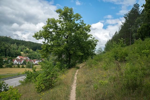 Wacholderweg von Aicha nach Allersburg  Wandern im Amberg-Sulzbacher Land 12