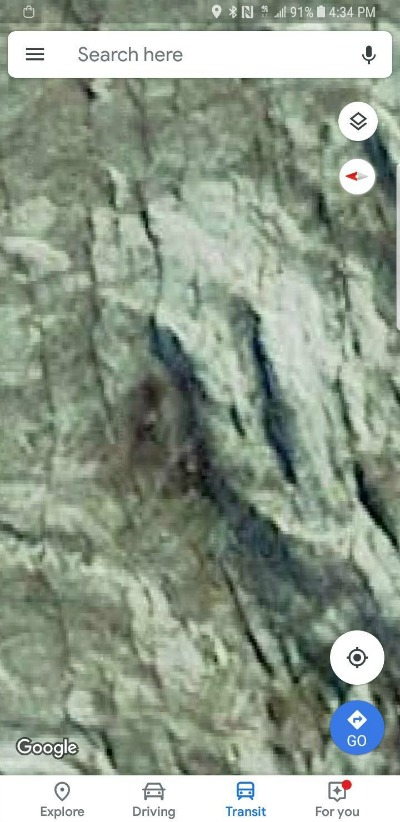 Are These Sasquatch Images on Mt. Rainier?