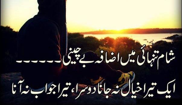 whatsapp cute status 2017 urdu latest poetry Shaam e tanhayi mai izaafe bechaini ek tera khayal