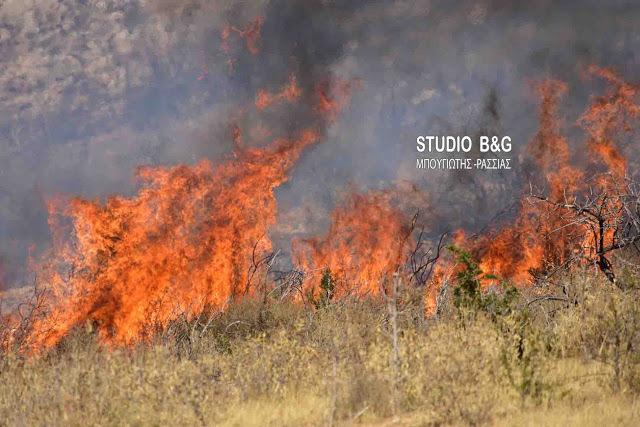 Παραμένει υψηλός ο κίνδυνος πυρκαγιάς στην Αργολίδα και την Δευτέρα
