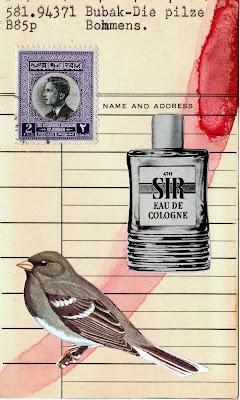 Dada Fluxus library card mail art postage stamp sparrow finch bird sir eau de cologne bottle collage