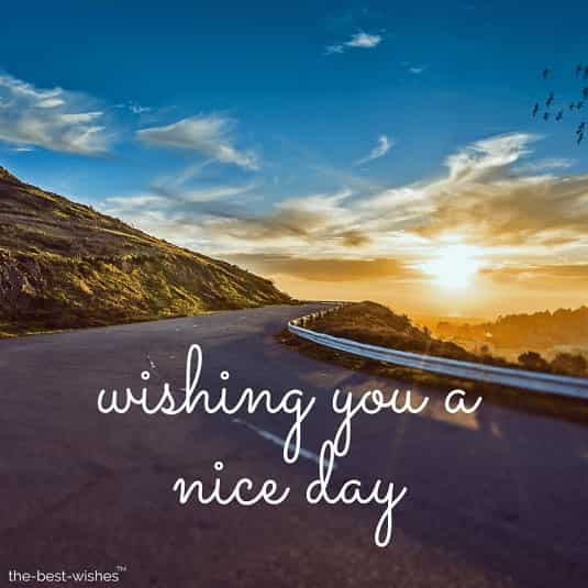 wishing you a nice day