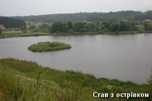 Острів на ставку у Свіржі