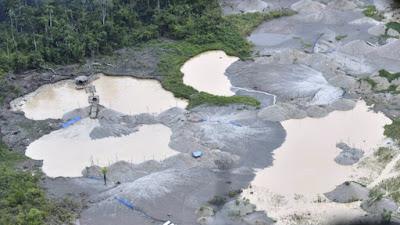 Perú invertirá US$ 60 millones en zona de Amazonía deforestada