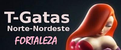 http://tgatasnortenordeste.blogspot.com.br/p/fortaleza.html