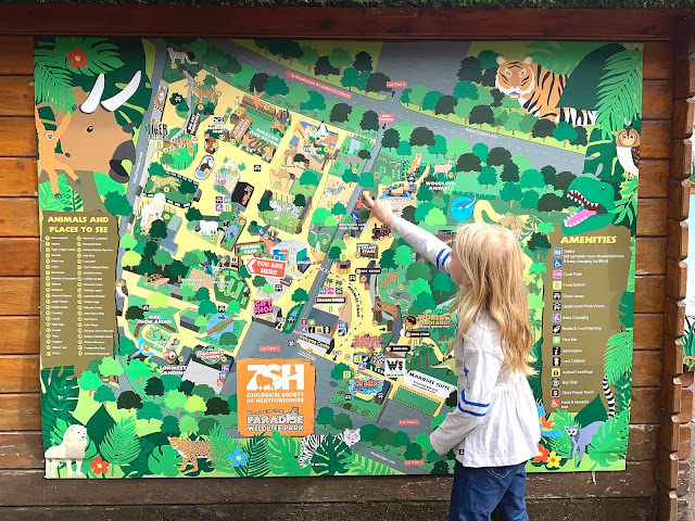 Looking at  a large map of Paradise Wildlife Park