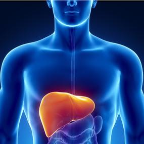 Hepatitis C adalah bentuk serius dari Gejala Dan Pengobatan Hepatitis C