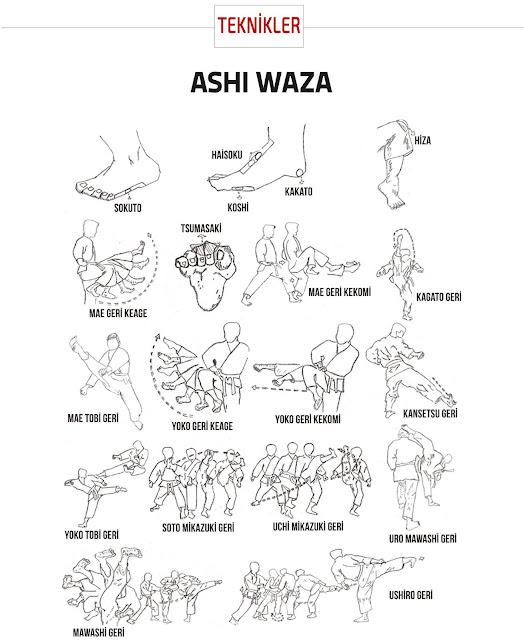 Ashi Waza / Teknik Kaki Karate