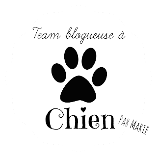 https://stylenuage.wordpress.com/2015/02/17/team-blogueuse-a-chien-mes-macarons/