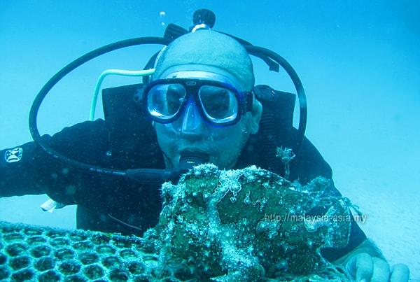 Diver in Malaysia