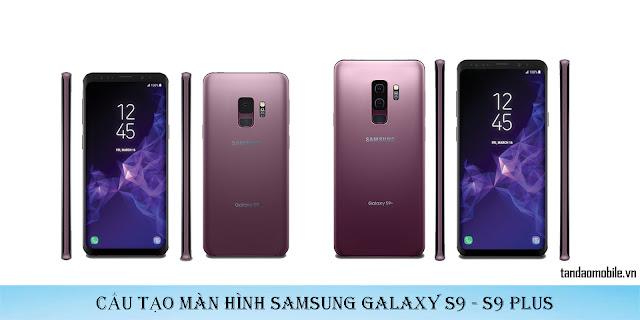 Cấu tạo chi tiết màn hình Samsung Galaxy S9/S9+