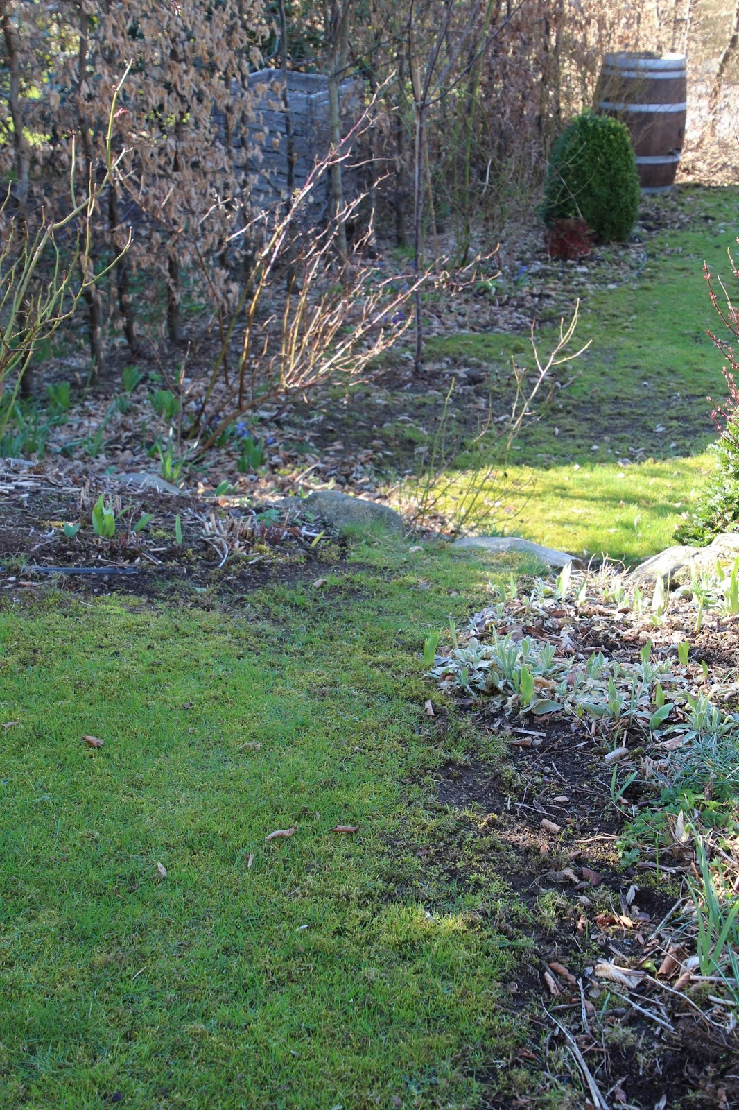 mossa i gräsmattan stroller kombi kombigödselmedel