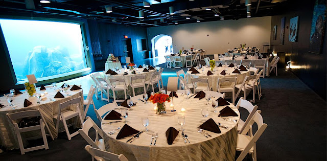 Wedding Venues In Pittsburgh Zoo Wedding pittsburgh zoo hours